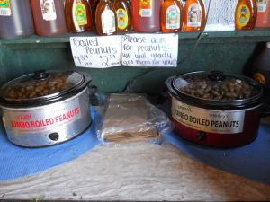 A trip to Florida isn't complete without some cajun boiled peanuts!