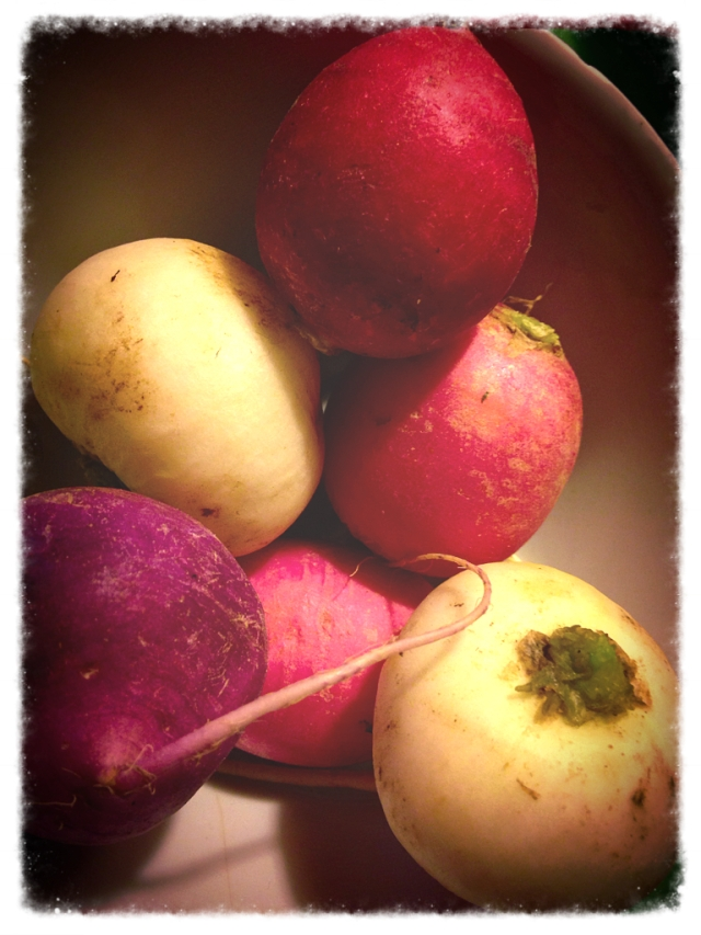 I love all the different colors of radishes this time of year.