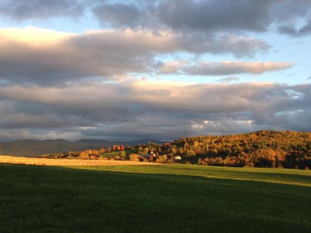 A little bit of Vermont foliage for you this morning. This was my drive home the other day!
