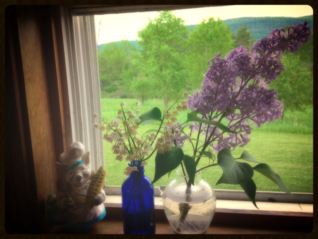 Doing dishes is more fragrant with the Lily of the Valley and lilacs that are out! Next are the peonies!